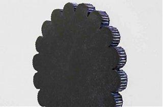 JP-Blot-2011.jpg